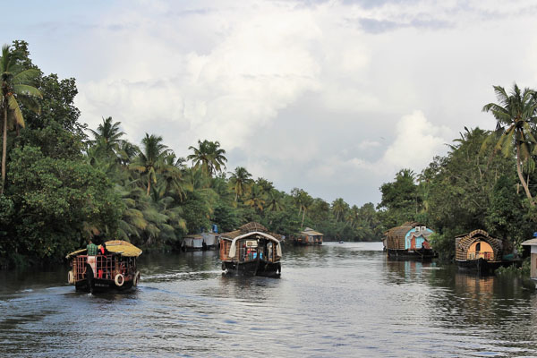 alleppey-backwater